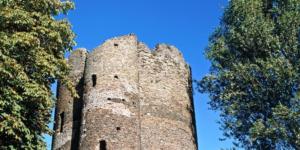 Riverside Spots Cow Tower